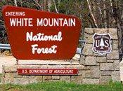 entering_white_mountain_national_forest