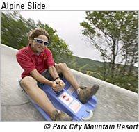 alpine-slide